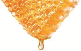 Đặc điểm và nguồn gốc các loại mật ong nguyên chất