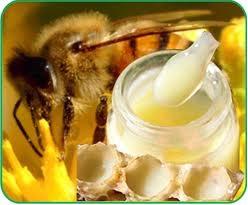 Sữa ong chúa dưỡng da toàn thân đặc biệt hiệu quả